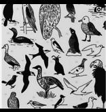 100 birds- framed