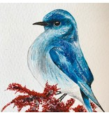 Mountain Blue Bird 5x7