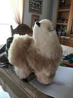 "Andean Art Alpaca Stuffed, 12"" Mixed Standing"