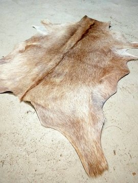 Blonde Goat Hide #199