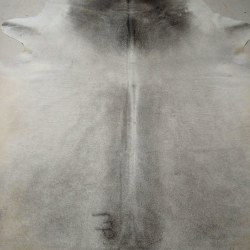 Gray + White Cowhide 2407