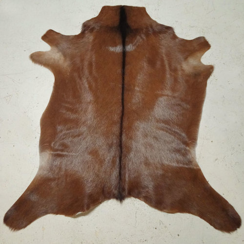 Red + Brown Goat Hide 215