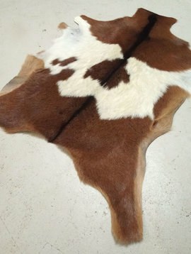 Tri Color Goat Hide 218