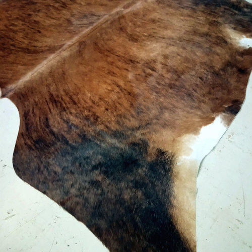 Brindle Cowhide 2438