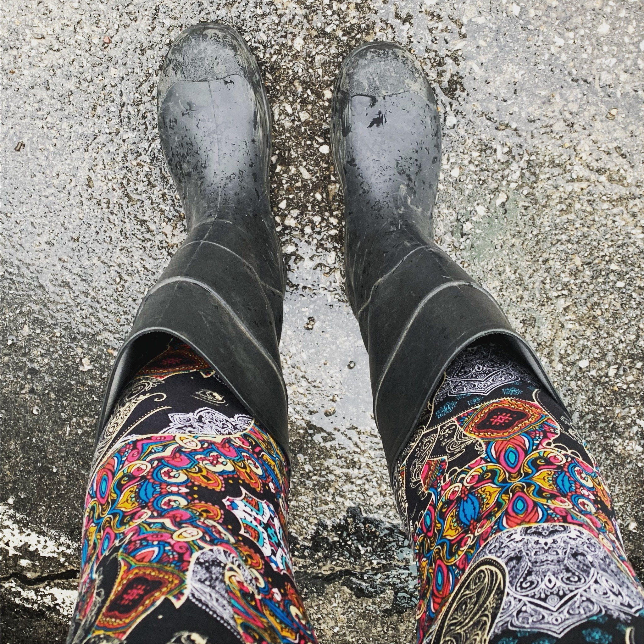 Elephant Leggings + Wellies