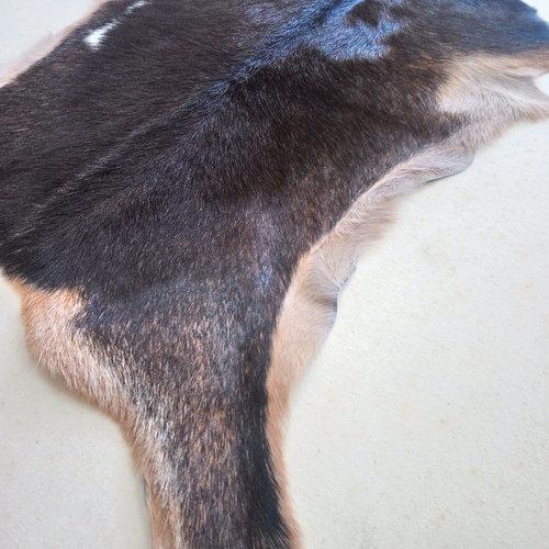 Dark Brown Goat Hide 243