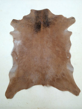 Brown Goat Hide 239