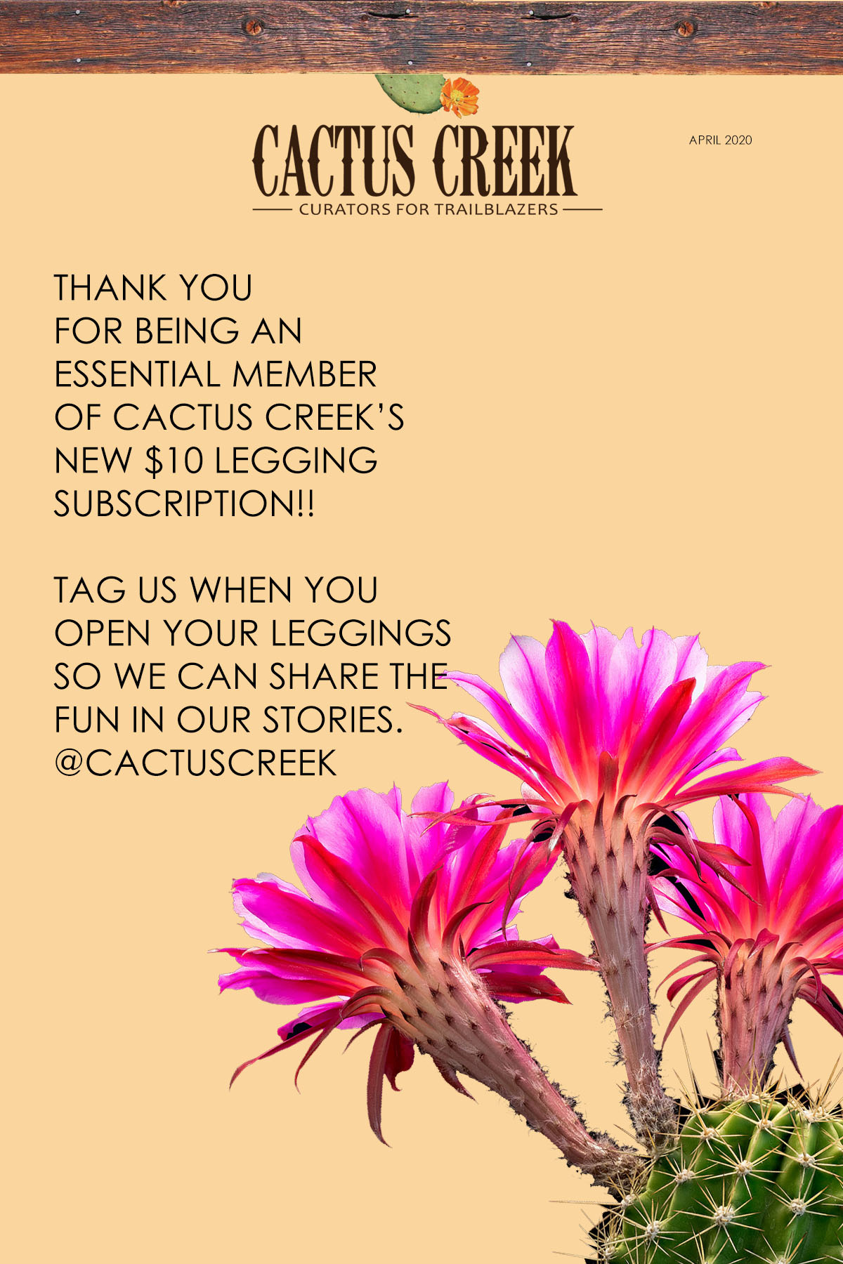 $10 Leggings Subscription Update