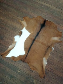 Brown & White Goat Hide 253