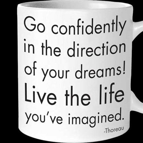 Go Confidently In The Direction Of Your Dreams Inspirational Mug Cactus Creek