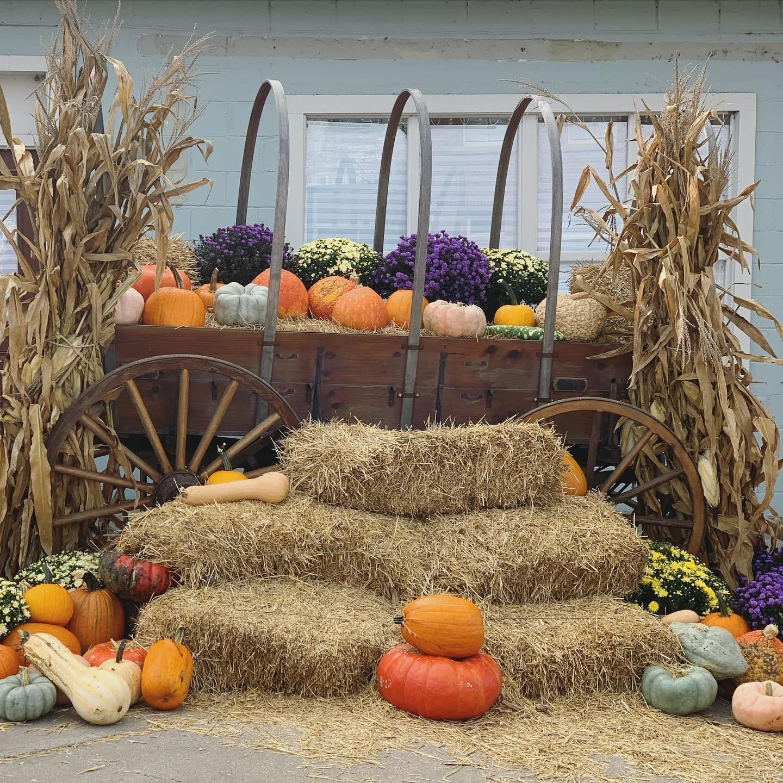 Fall Photo Ops in Weston Missouri
