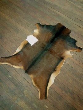 Brown Goat Hide with Stripe #265