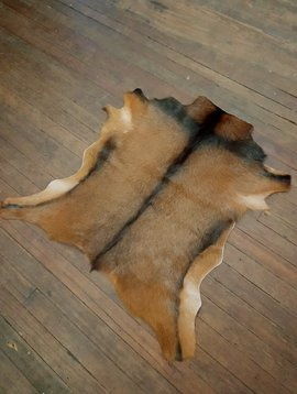 Brown Goat Hide #270