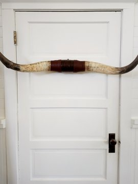 Texas Longhorn Rack