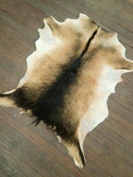 Long Hair Tri Color Goat Hide #273