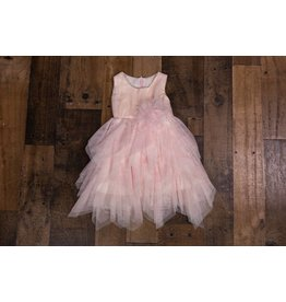 Isobella & Chloe Pastel Pink Mesh Dress