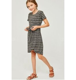 Hayden Stripe Jersey Knit Overlay Shirt Dress