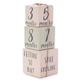 Mud Pie Girl Milestone Blocks
