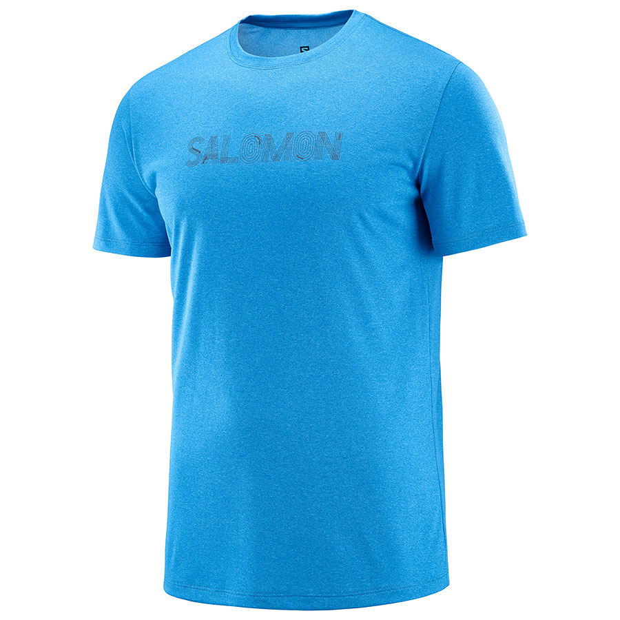Salomon Men's Agile Graphic Tee