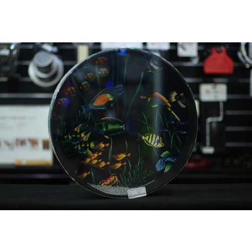 Remo Remo 16 in Ocean Drum 'Fish Graphic' 2 1/2 in Depth
