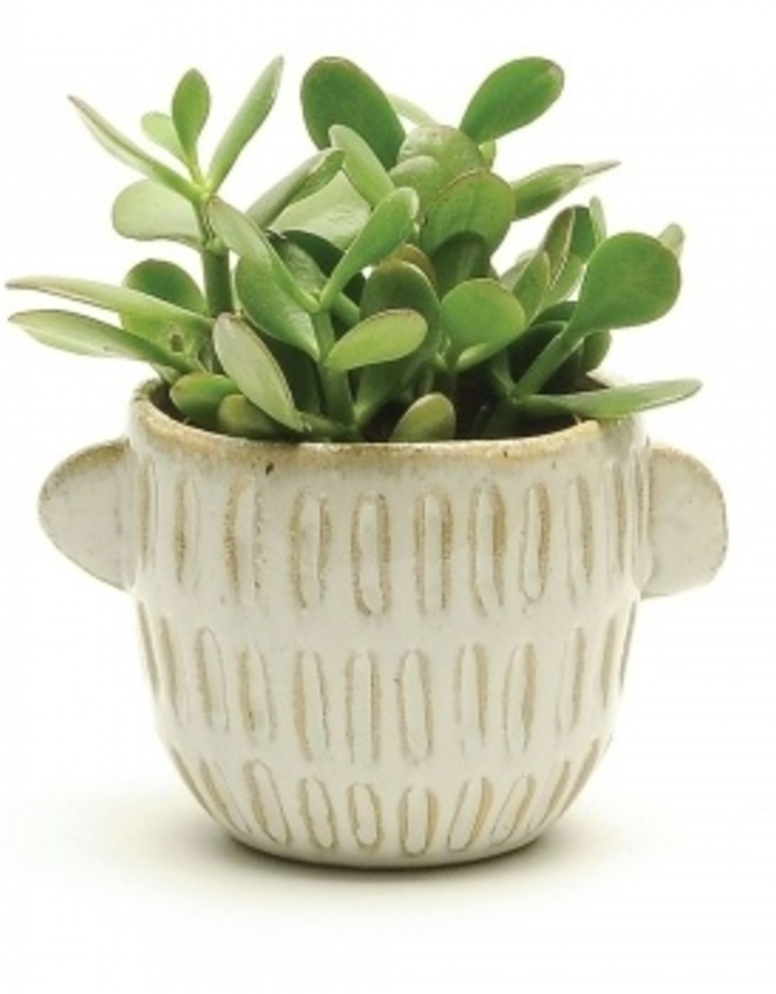 White Pot with Handles (medium)