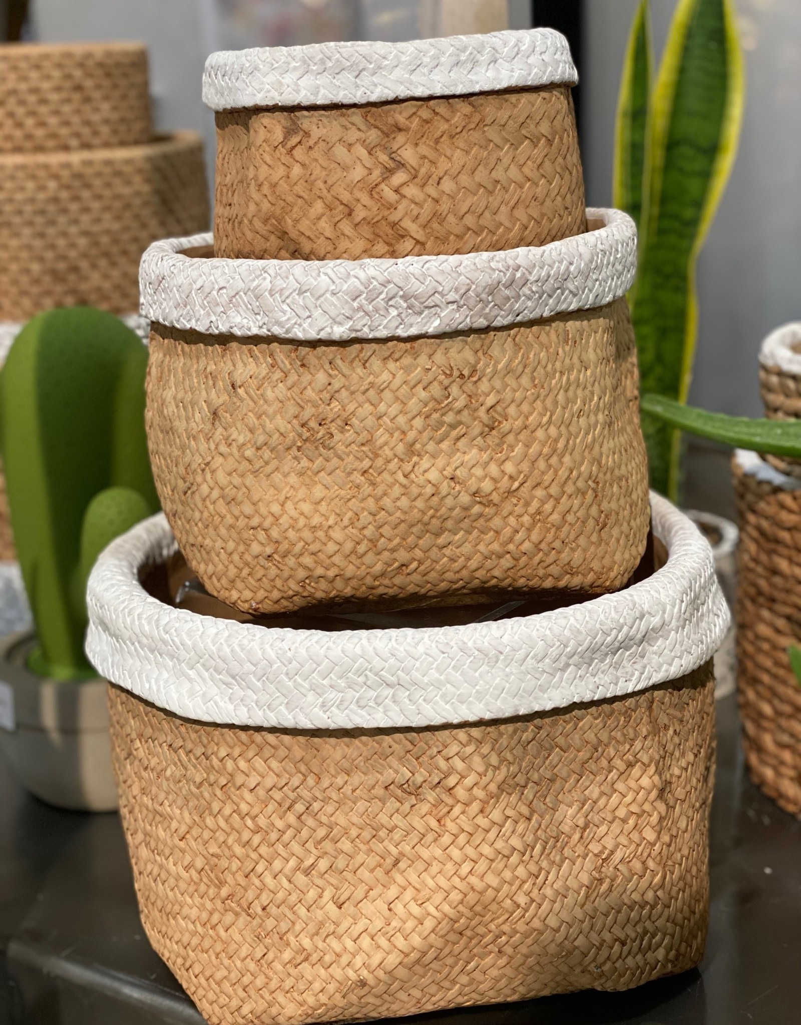 Basket Weave Cement Pot White Trim (small)