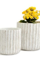 White Ruffled Pot (large)