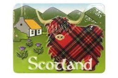 Magnet: Highland Cow Scene