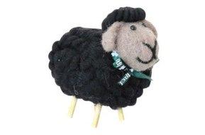 Irish Black Sheep
