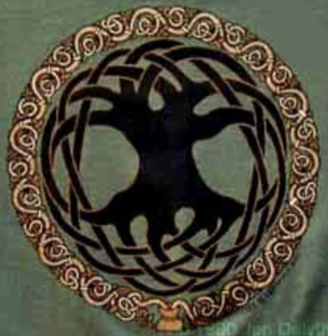 T Shirt: Mens Tree Of Life Pine