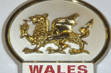 Magnet: Wales Gold Dragon, Pewter