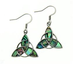 Earrings: Stainless Abalone