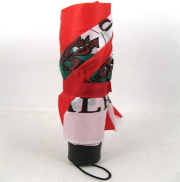 Umbrella: Welsh Dragon