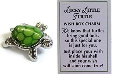 Charm: Lucky Little Turtle Wish Boxes