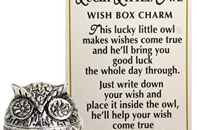 Charm: Lucky Little Owl