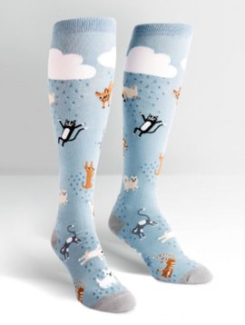 Sock it to Me Raining Cats & Dogs
