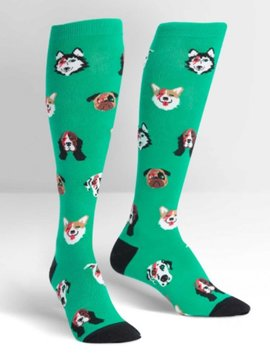 Sock it to Me Dogs of Rock