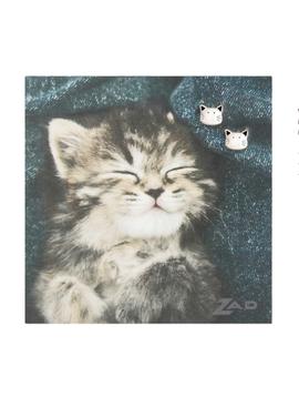 Cat's Meow Silver Post Earrings