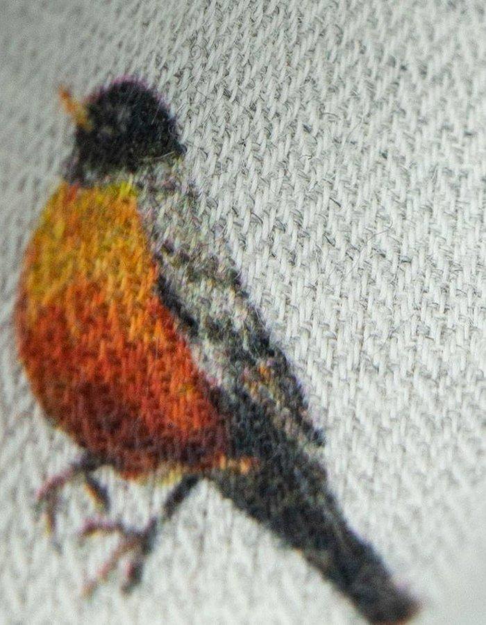 Custom Shirt ZCP Ornithology