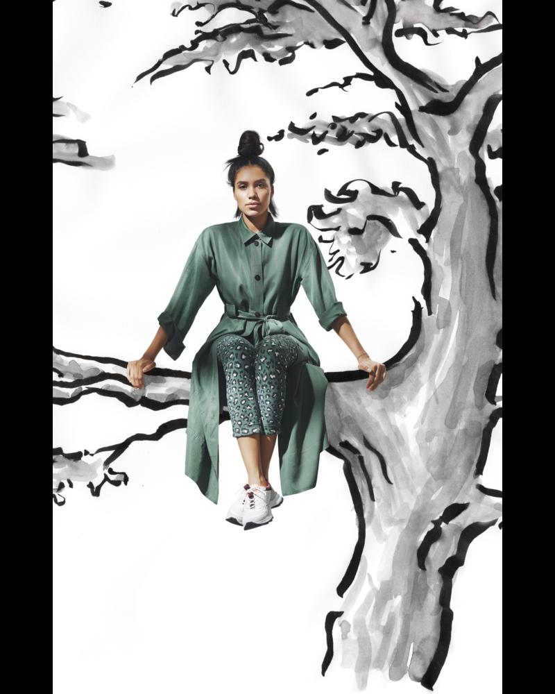 Bitte Kai Rand Leopard In The Tree