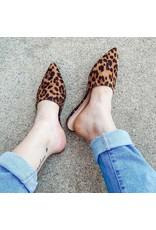 Fashion Forward Leopard Mules