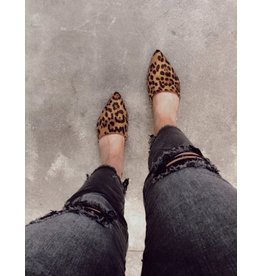 Fashion Forward Leopard Mules