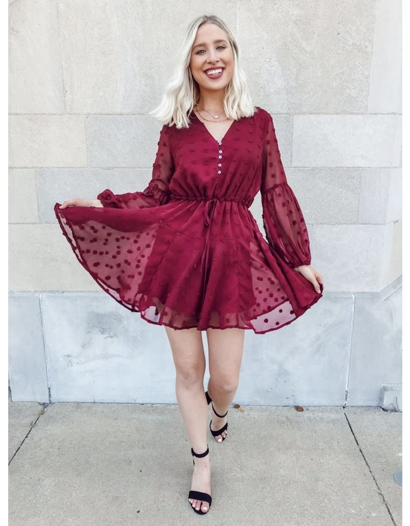 The You Go Girl Swiss Dot Dress