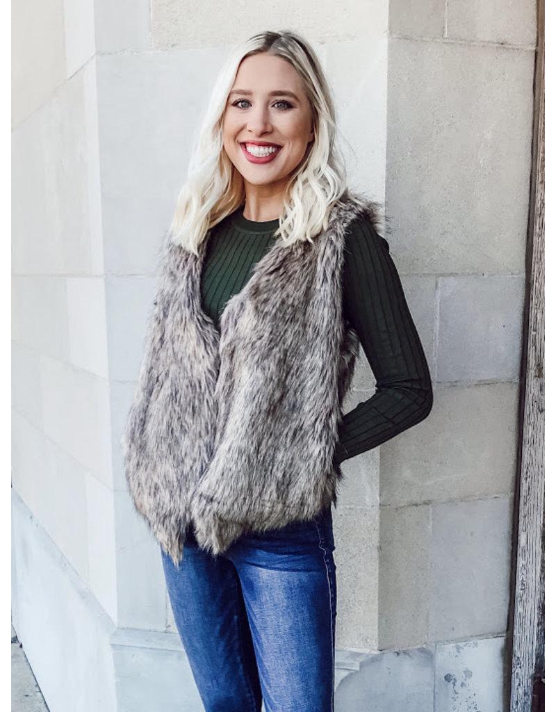 The Style Time Faux Fur Vest
