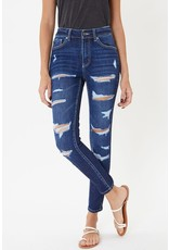 The Curtis Distressed High Rise Skinny - Curvy Style