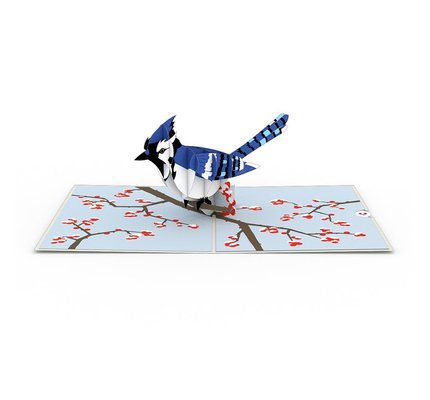 Lovepop Blue Jay 3D Card