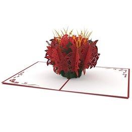 Lovepop Poinsettia 3D Card