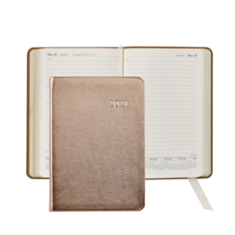 Graphic Image Graphic Image 2021 Rose Gold Metallic Goatskin Leather Daily Appointment Journal