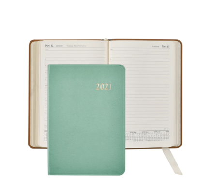 Graphic Image Graphic Image 2021 Robin's Egg Blue Goatskin Leather Daily Appointment Journal