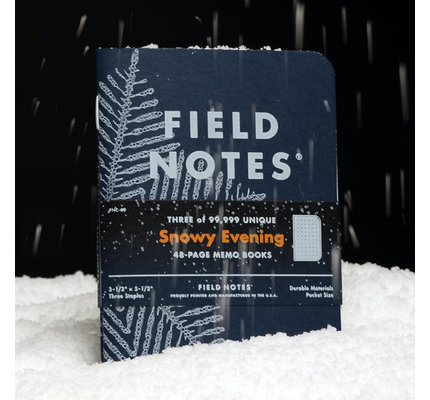 Field Notes Field Notes Winter 2020 Edition Snowy Evening